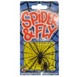 Joke Spider & Fly