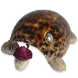 Shell Large Tigris Turtle / Col Hat