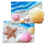Magnet  Resin Pearl Effect Seashell