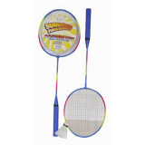 Badminton 2 Player Set Standard
