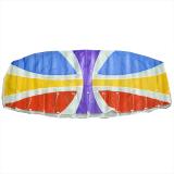160 Parafoil Kite
