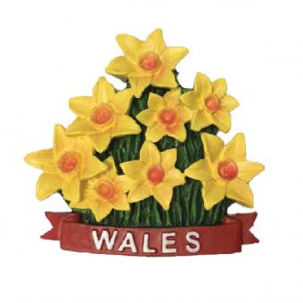 Magnet Wales Daffodil