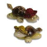 Shell Catput Turtle 50pc In Basket