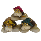 Shell Trio Caput Turtles / Col Hats